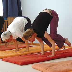 Die Yogastellung Kranich