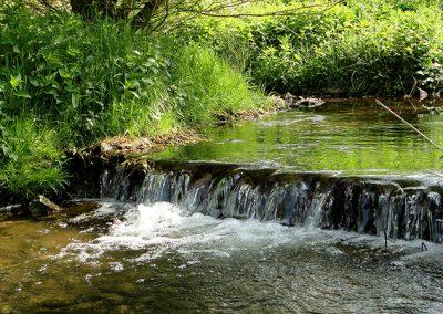 Naturschutzgebiet Speckenbachtal