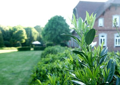 Garten | Harbergen Retreat Zentrum